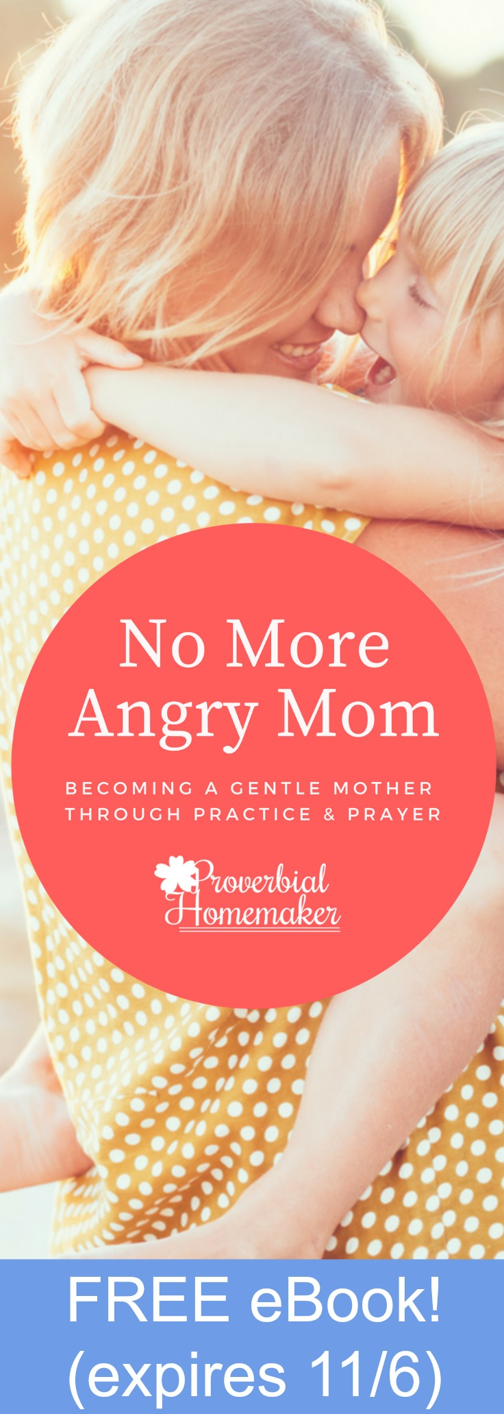 No More Angry Mom: Becoming a Gentle Mother Through Practice & Prayer