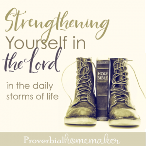 When the storms of daily life hit - whether big or small - strengthen yourself in the Lord! Here is biblical encouragement from the pages of the story of David.