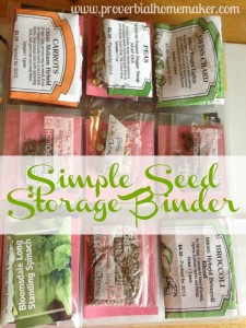 Simple Seed Storage Binder www.proverbialhomemaler.com LEarn how to set up your own seed storage binder with a few simple supplies!