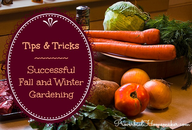 Tips and tricks for successful fall gardening and winter gardening