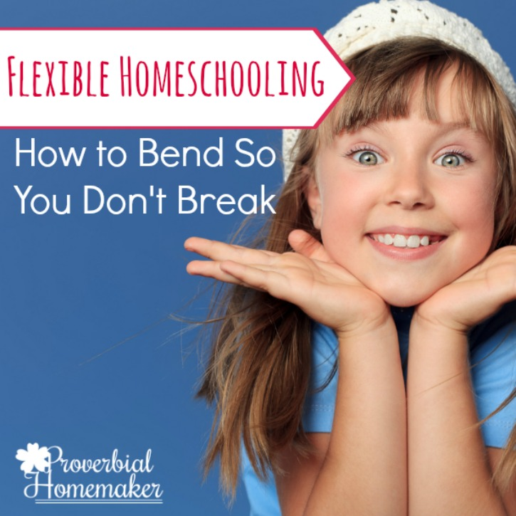 Flexible Homeschooling {Giveaway: Online Unit Studies!}