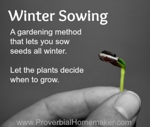 Winter Sowing - how to garden all year long