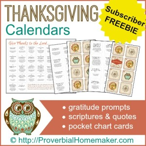 Thanksgiving Calendar Set focusing on gratitude and scripture! - gratitude prompts, scriptures and quotes, and pocket chart cards. ProverbialHomemaker.com