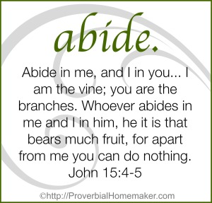 My one word for 2015 is abide
