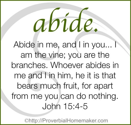 One Word for 2015: Abide