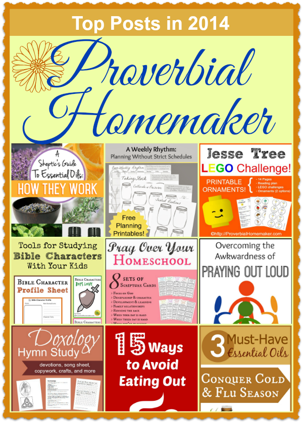 Top 2014 Posts Proverbial Homemaker