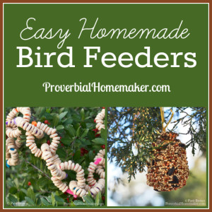 Fun and easy bird feeder activity