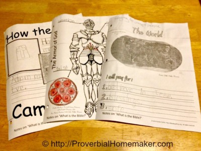 Bible based homeschool curriculum for history