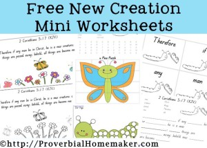 New Creation Worksheets