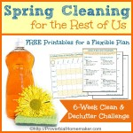 Spring Cleaning Challenge for the Rest of Us (+ BIG Giveaway & Blog Hop!)