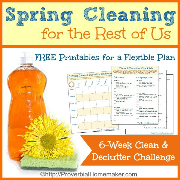 Download the flexible 6-week Spring Cleaning challenge!