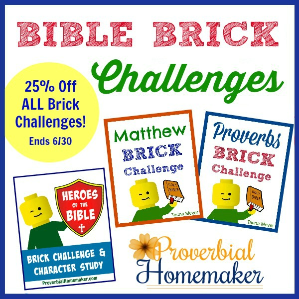 Brick challenge prompts and extra activities to help make the holidays fun and memorable!