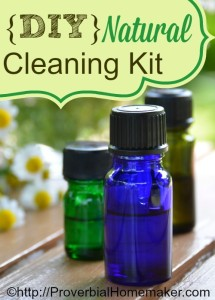 DIY Natural Cleaning Kit using gentle products and essential oils