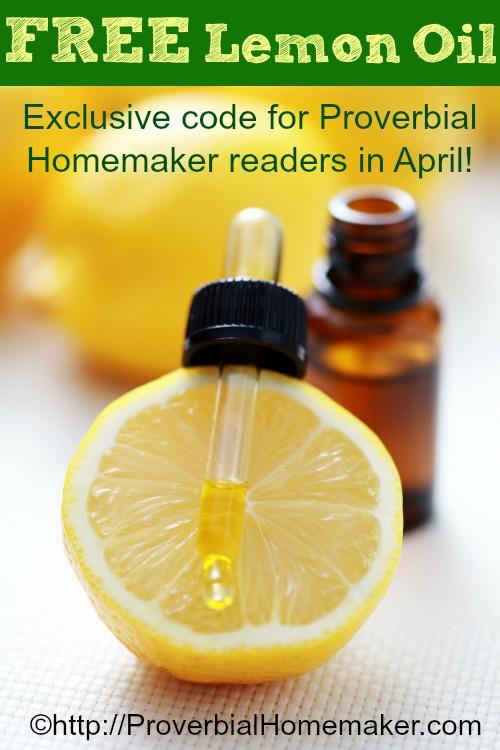 Diy Natural Cleaning Kit Proverbial Homemaker