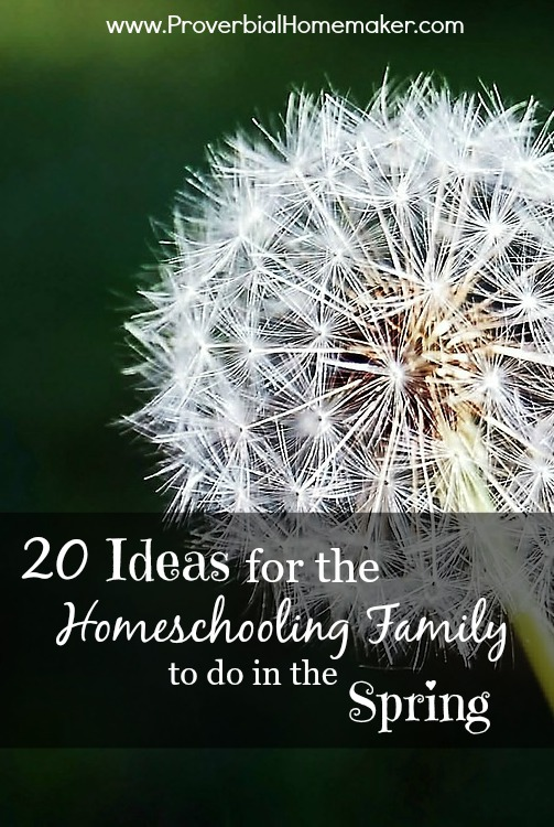 Spring ideas for homeschooling
