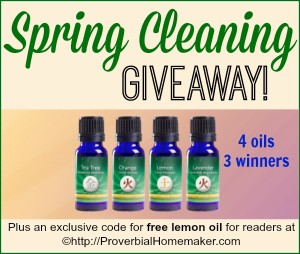 Spring Cleaning Giveaway: 4 Essential Oils and 3 Winners