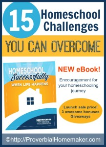 15 Homeschool Challenges You Can Overcome with the new ebook Homeschool Successfully When Life Happens