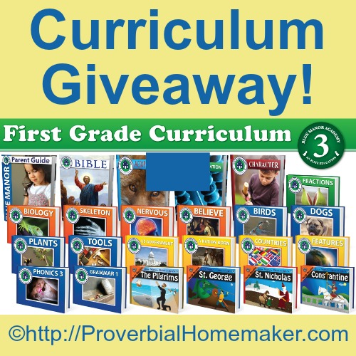 Blue Manor 1st Grade Curriculum Giveaway