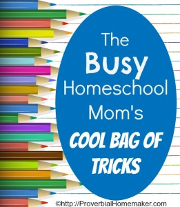 Busy Homeschool Mom's Cool Bag of Tricks
