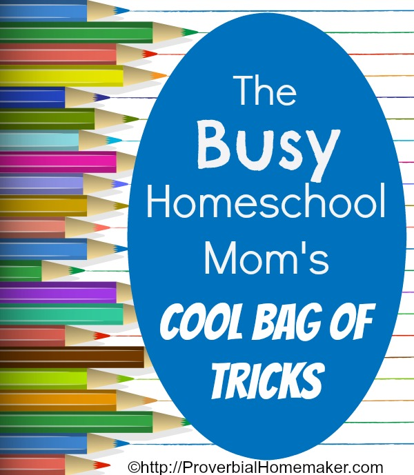 Busy Homeschool Mom's Cool Bag of Tricks