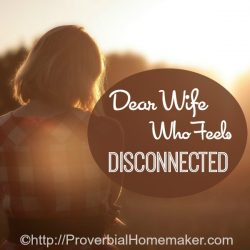 Dear Wife Who Feels Disconnected From Husband