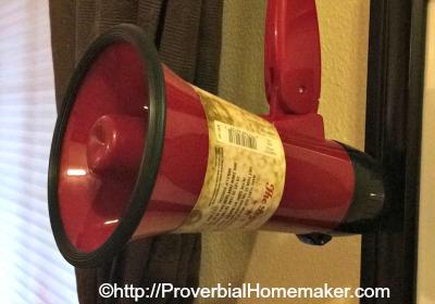 Busy Homeschool Mom's Cool Bag of Tricks - use a megaphone!