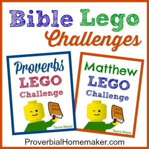 Children learn the Bible in a fresh and fun way by building through the stories!