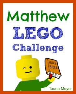 Matthew Lego Challenge Cover 300