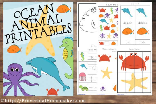 Fantastic ocean animals printable for the little learner in your home!