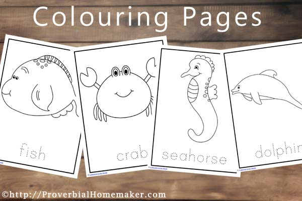 Ocean Animals Printables Colouring Pages