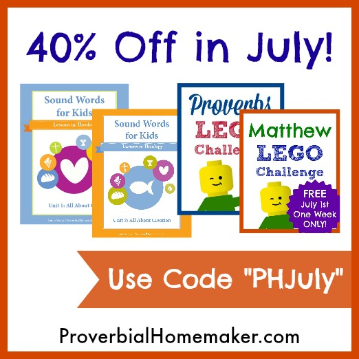 40% off all Proverbial Homemaker products in July