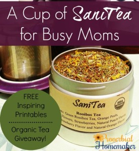 A Cup of SaniTea for Busy Moms Sanity for Busy Moms Proverbial Homemaker
