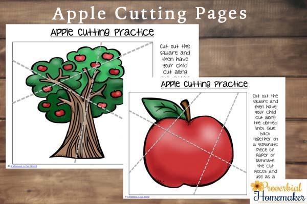 Apple Cutting
