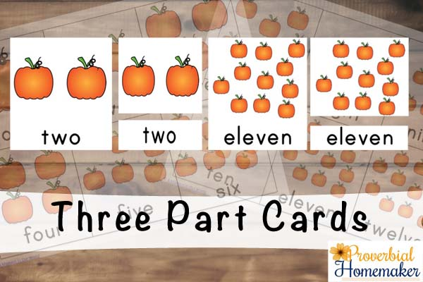 3 Part Cards