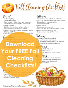 After school starts and before the holidays is a great time to do some cleaning and decluttering! Find out why and get some helpful fall cleaning checklists to get you started.