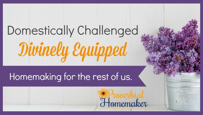 Homemaking accountability and support FB group for Christian women