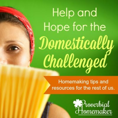 Help and Hope for the Domestically Challenged