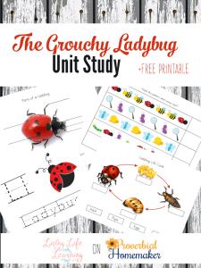 Printables for The Grouchy Ladybug