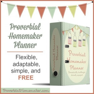 This is the BEST planner! It's a flexible, adaptable, and simple homemaking planner that's designed just for you and is totally free!