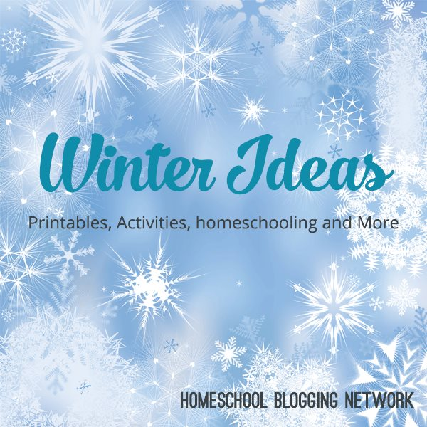 Check out these fantastic posts for winter homeschooling ideas!