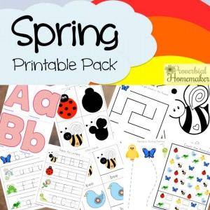Spring Printable Pack - such a cute printable to celebrate spring!