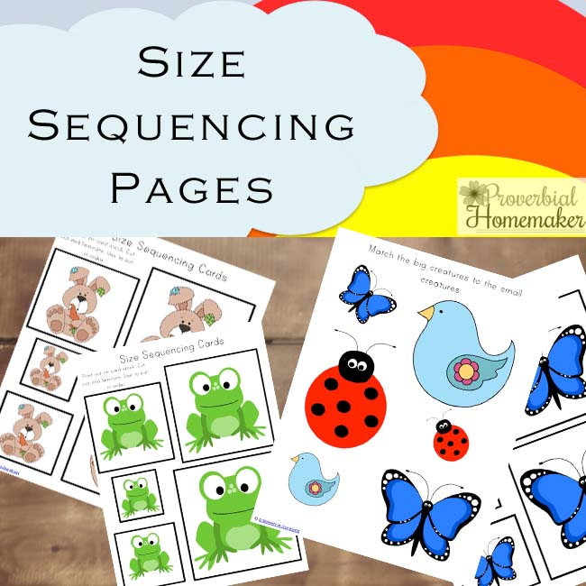 graphic regarding Sequencing Cards Printable named Spring Printable Pack (70 Web pages of Mastering Enjoyable