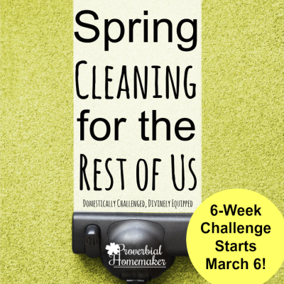 Spring Cleaning for the Rest of Us (InstantPot & $50 Amazon Giveaway!)