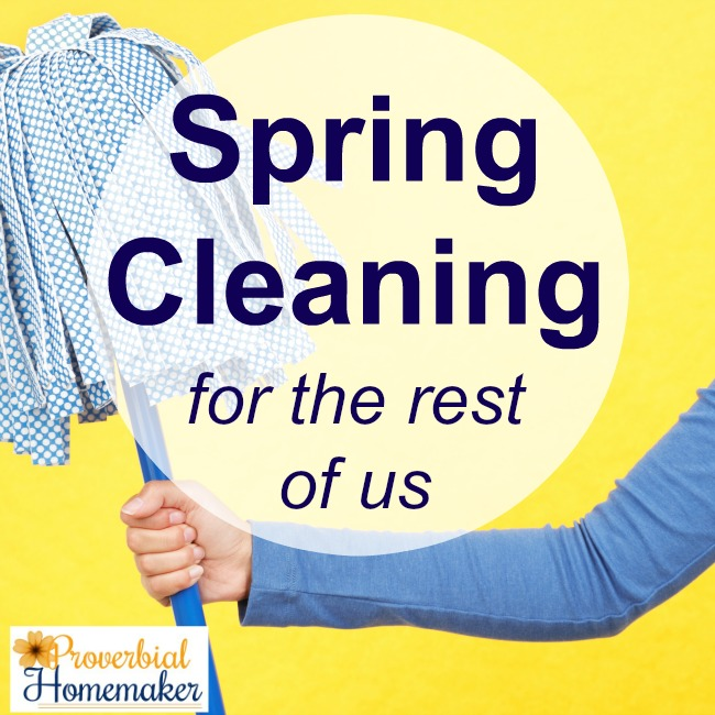 Spring cleaning for the rest of us!! Love this great cleaning challenge just for the type B homemaker.