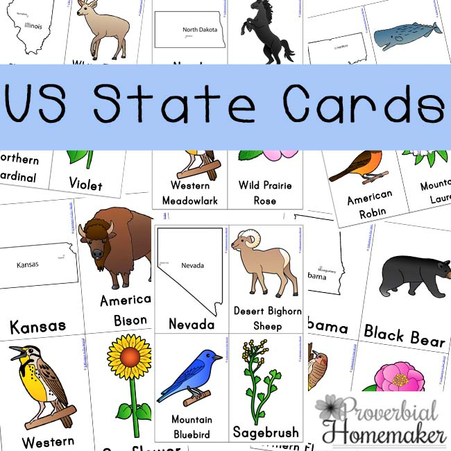 Love these U.S. State Card printables for teaching kids the state shapes, animal, flower, and more!