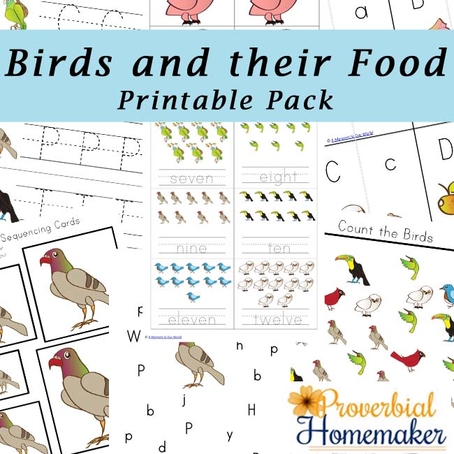 Birds and Their Food Printable Pack