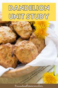 Dandelion Unit Study