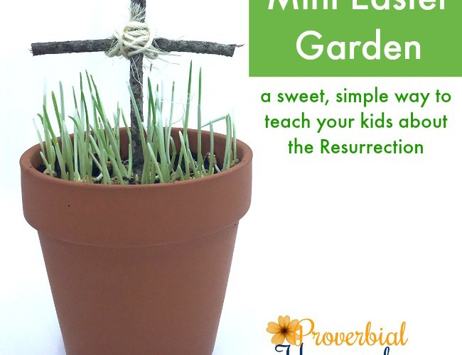 Such a fun twist on this idea! Teach your kids about the resurrection story with these mini Easter gardens!