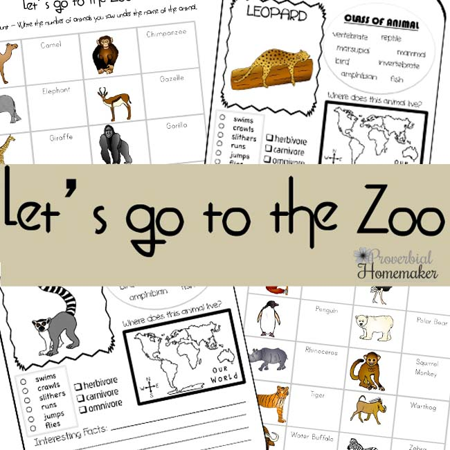FREE Zoo Scavenger Hunt and Animal Report Printables ...