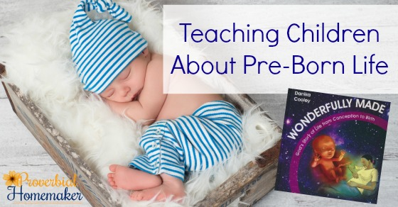 Teaching Children about pre-born life with the new book Wonderfully Made: God's Story of Life from Conception to Birth